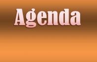 Agenda 11