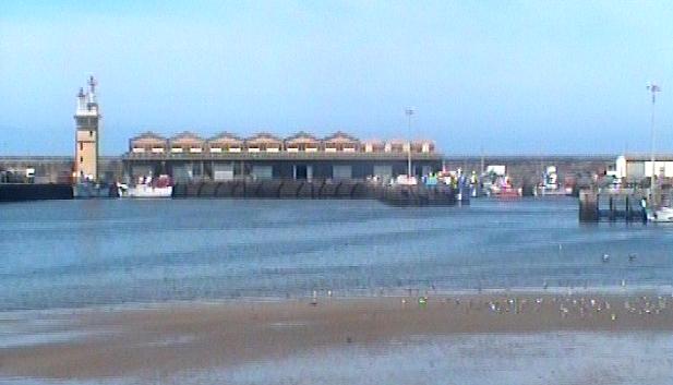 Covid-19: Sector das Pescas pede apoios ao Governo