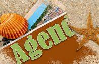 Agenda: Ter, 28 Julho