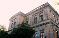 NLtv Viana: 11 Junho